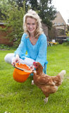 Woman feeding chicken Royalty Free Stock Photography