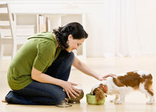 Woman feeding dog Stock Photo