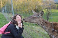 Woman feeding European Roe Deer, Capreolus capreolus Stock Photos