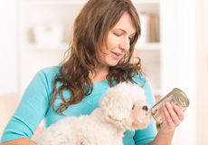 Woman feeding her dog. Woman owner of small doggy maltese with can of dog food Stock Photos