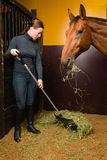 Woman feeding horse. In the stall, vertical format Royalty Free Stock Photography