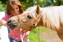 Woman feeding horse on pony farm Stock Image