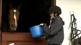 Woman feeding horse in stable stock footage
