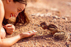 Woman feeding moorish squirrel Royalty Free Stock Photos