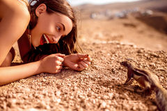 Woman feeding moorish squirrel Stock Photography