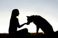 Woman Feeding Pet Dog Treats Silhouette. A silhouette of a girl sitting outside in the grass with her pet German Shepherd Mix Dog, feeding him treats during Stock Photo