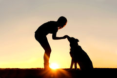 Woman Feeding Pet Dog Treats Silhouette. A silhouette of a girl sitting outside in the grass with her pet German Shepherd Mix Dog, feeding him treats during Royalty Free Stock Photography