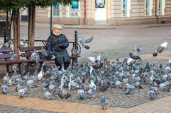 Woman feeding pigeons in Liberty Square located in the hearth of the city. Stock Image