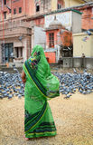 A woman feeding pigeons on street in Jaipur, India Stock Images