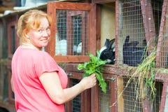 Woman feeding rabbits Stock Images