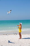 Woman Feeding Seagulls Stock Photo