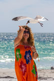 Woman feeding seagulls Royalty Free Stock Photo