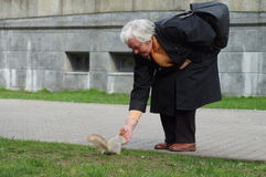 Woman feeding a squirrel in the Park Royalty Free Stock Image