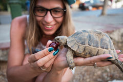 Woman feeding turtle Royalty Free Stock Photography