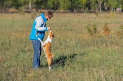 Woman feeding up basenji dog. While playing outdoor Royalty Free Stock Photography