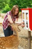 Woman feeding a young deer Stock Images