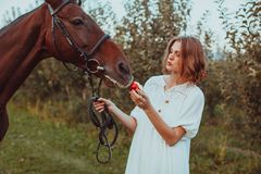 A woman feeds a horse. A woman dressed in a white dress, feeds a horse with a red apple Stock Photos