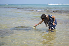 A woman feeds a sea turtle in the shallows, the famous resort of Hikkaduwa, Sri Lanka Stock Photography