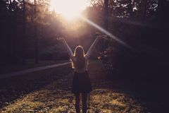 Woman feeling free on sunset. Silhouette of the woman spreading arms with her thumbs up, standing in forest in sunset light. Woman Stock Photos