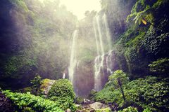 Woman feels the fresh from the Sekumpul waterfall in Bali, Indon. Esia Royalty Free Stock Images