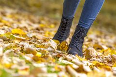 Female legs in boots on autumn leaves Stock Photography
