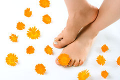 Woman feet and flower Stock Photo