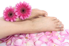 Woman  feet and flowers isolated over white Royalty Free Stock Images