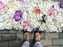 Woman feet, flowers and love Stock Photos