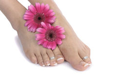 Woman  feet and flowers  over white Stock Photos
