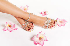 Woman feet with pedicure and flowers Stock Photos