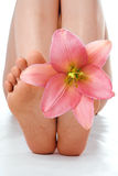 Woman feet with pink lily Royalty Free Stock Photos