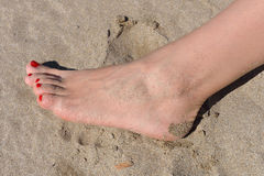 Woman feet with red pedicure walking on the hot sand of the beac Royalty Free Stock Image