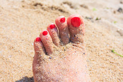 Woman feet, Royalty Free Stock Image