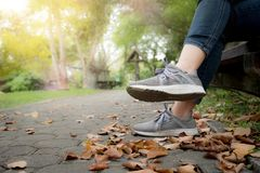 Woman feet in sneaker on green grass in the park stock image