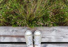 Woman feet in sneakers on the wooden path background with green grass. royalty free stock photography