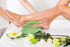 Woman feet undergoing massage stock image