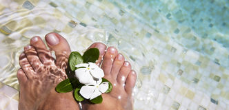 Woman feet in water  Royalty Free Stock Photo