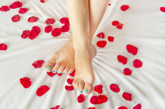 Woman feet on white sheet with rose petals Stock Photos