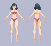 Woman or female body in cartoon style. Front and back standing pose. Vector illustration Stock Photography