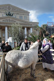 Woman and female donkey in Easter decorations in Moscow Royalty Free Stock Photography