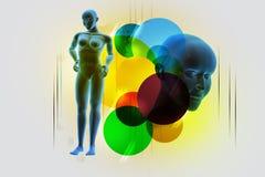 Woman female human body Stock Image
