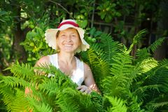 Woman with ferns Stock Images