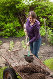 Woman fertilizing garden bed with compost from wheelbarrow Royalty Free Stock Photography