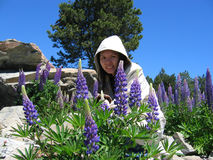 Woman in field. A beautiful woman wearing a hood sitting in beautiful lavender flowers in a garden Stock Images