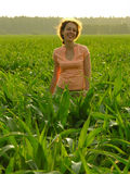 Woman in field Stock Image