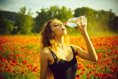 Woman in field of poppy seed drink water from bottle. Woman with long curly hair drink water from plastic bottle in flower field of red poppy, summer, drug and royalty free stock image