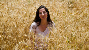 Woman in a field. Pretty Woman standing in a wheat field Royalty Free Stock Photos