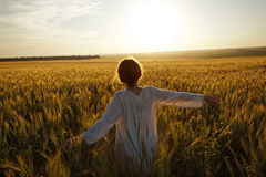 Woman in a field of ripe wheat Royalty Free Stock Images