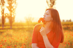 Woman in field in sunlight Stock Images