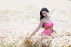 Woman in field of wheat. Young beautiful woman in coral dress walking trough wheat field Royalty Free Stock Photo